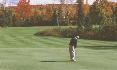 7 green in Autumn