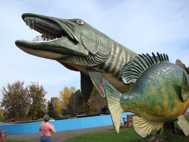 Hayward's Own BIG MUSKY