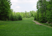 Hole 14 Back Tees