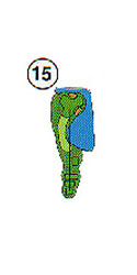 Layout of Hole 15