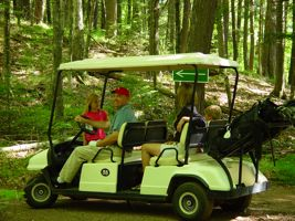 4-seater Surrey golf carts